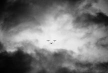 nuvole - nuage - clouds