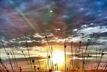 Scenery / by Chelsea McManus