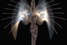 Physical Angel