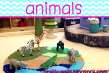Animals / Ideas and resources for pre-k or kindergarten animals study.