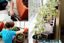 Gardening / Outdoors