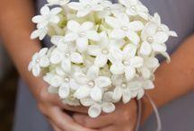 { Flower Dictionary }