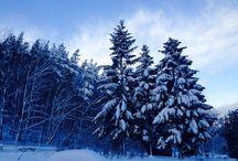 Zima / Zimą też może być pięknie