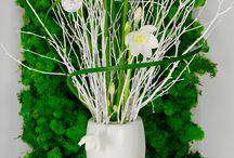 Green & White Flowers