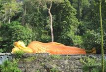 Thailand Trip 2013
