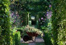 Grădini secrete