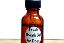Homemade Dog Products / DIY products and remedies for your dog