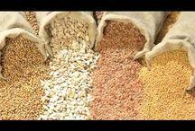 lucha contra monsanto y sus semillas del diablo... es este un buen nombre prar el tablero? o lo incluimos en comidas venenosas para tu familia?