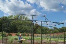 fruit tree net