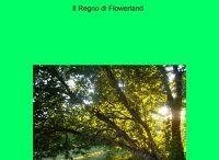 La Foresta dei due Mondi / 2 Libro della mia Trilogia Fantasy