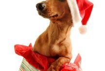 Ho, ho, ho...!