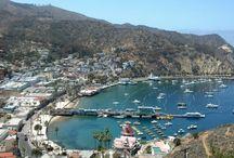 Catalina Beach Wedding -- #daveputaringonit2015 / Dave Dawes and Lorren Repton to Wed on September 26, 2015