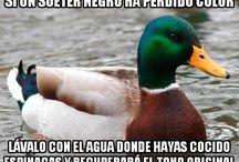 Duck Hacks
