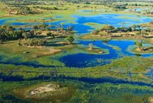 """Botswana / Join us on our """"Botswana Safari: The Okavango Delta & Chobe Waterways"""" schedule group safari and see this amazing country from all angles—by air, canoe, 4×4, and on foot through the diverse landscapes of this wildlife paradise. At night, relax in intimate tented camps and a sumptuous safari lodge—accommodations that highlight the exclusiveness of this safari while providing all the comforts of home."""