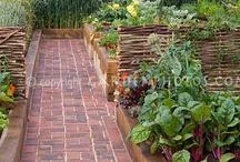 Future garden