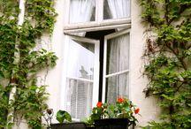 Paris / by LindsayandChad Holloway