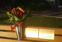 Memorial Bench Program / Benches placed throughout the Lakes are a beautiful way to remember your loved one.