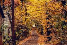 что осень нам сулит