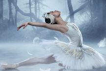 Swan lake / Ballet, shoes, swan lake
