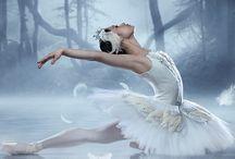 Dedicated2Dance show Black Swan
