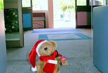 Bing the Library Bear  / Christmas Adventures of Bing the Library Bear