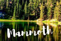 Mammoth trip