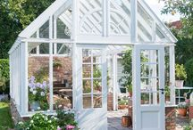 Garden Shed / Green house