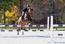 Artykuły związane z jazdą konną