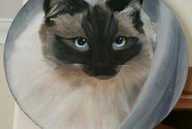 Drawings/paintings / Art i've created