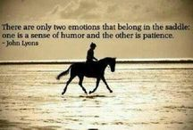 Horse quotes / I love horses / by Hunter Grace