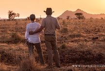 Northern Kenya / Escape the crowds and explore the wild and rugged wilderness of Northern Kenya. Superb - and unusual - wildlife, rich in culture and 'off the beaten track'. Worth a visit