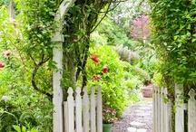 ogród kiedyś...