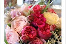花贈り / 季節の花贈り