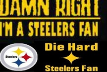 My Steelers!!!! / by Donnita Spears