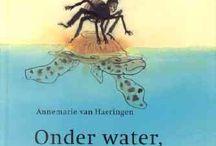 de zee/water
