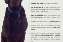 A Dog's Life / by Deborah Dare
