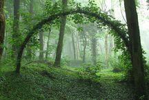 Natur og have