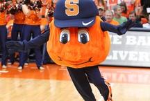 [Go Orange] / Go Orange!
