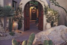 Livin' That Desert Life / All the desert landscaping inspiration you could ask for! Drought resistant landscaping ideas for all of us here in the Sonoran Desert.
