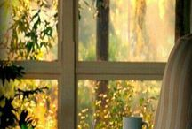 Winsome Window