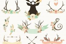 Deers / The king of forest, that's a deer.