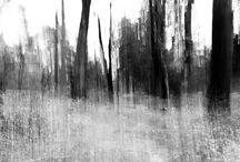 Landschap / Ideetjes