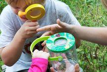 Kriebel beestjes ontdekken - Gekopbeestjes.nl / Kids en beestjes vinden elkaar over het algemeen heel gezellig. En wandelingetje in de tuin is een heuse expeditie als je goed kijkt wat er allemaal leeft.  Spelen in de tuin is natuurlijk leuk maar ontdekken in de tuin, de buurt of het bos is nog veel leuker! Gek op beestjes stimuleert kinderen, en hun ouders, om op zoek te gaan naar de beestjes in hun eigen omgeving en zo meer te leren over de natuur. Op deze pagina kan je alles vinden wat je nodig hebt.