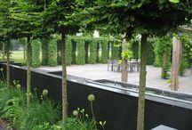 Garden Design / Inspiration for the garden