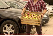 Jedz jabłka / Jedz jabłka razem z nami