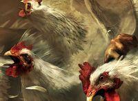 wallpaper kitchen poultry