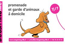 on parle de dogsitting lille :)