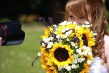 Photo and wedding