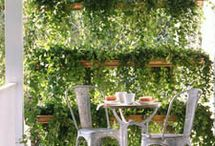Gardens and Outdoor Decor / by Mimi Rose Creative Designs