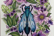 Hanna Karlzon Colouring / Colouring